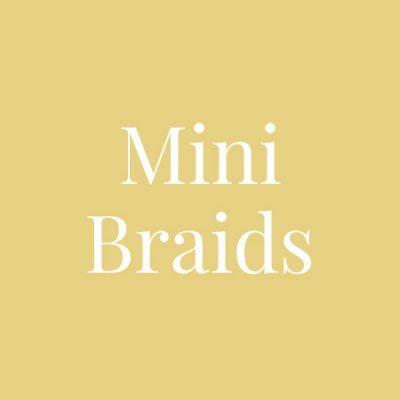 Mini Braids